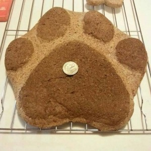 Paw Print of any Flavor