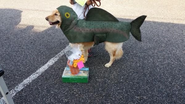 Dog_Costume_4
